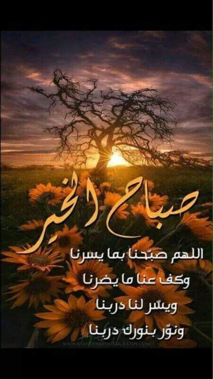 FB_IMG_1448292274479.jpg.fdfa7fb1fbda6f0