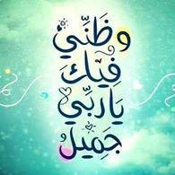 احمد حسن الشاعر