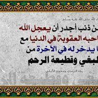 mohamedamy2